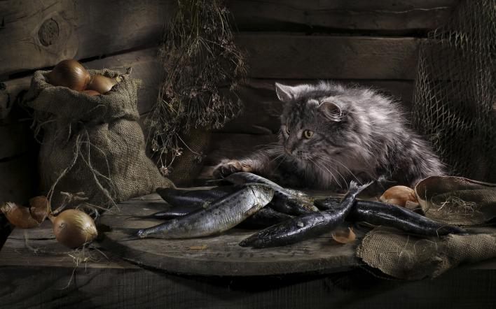 Рассказ про кота рыболова который любил ловить рыбу | 442x708