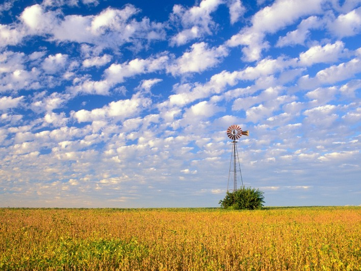 Country Field, Illinois