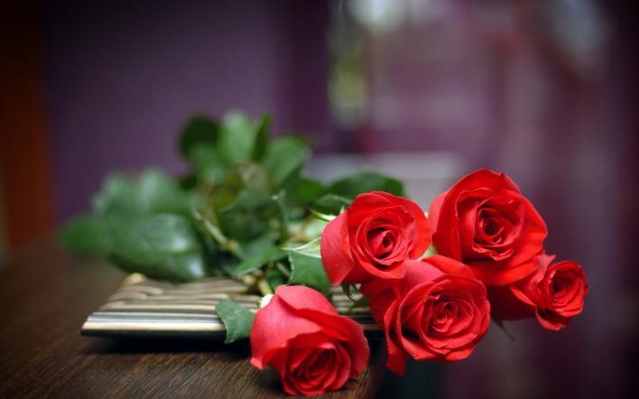 картинки на рабочий стол красивые цветы розы № 444913 бесплатно
