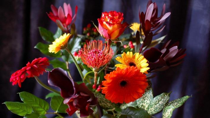 картинки на рабочий стол цветы самые № 517230 бесплатно