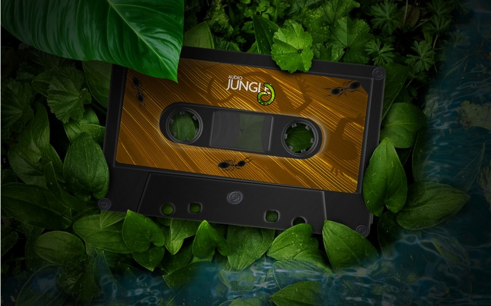 Jungle Audio