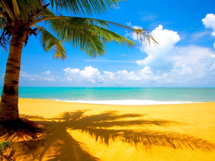 Картинка океанское побережье