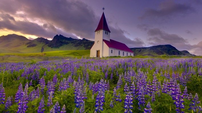природа поле горы трава цветы архитектура nature field mountains grass flowers architecture