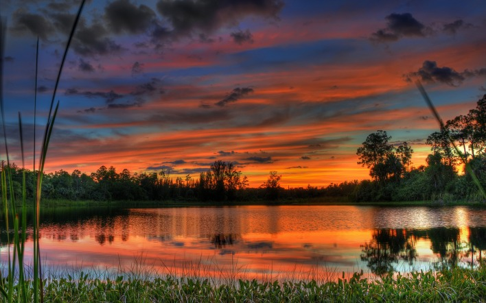 природа озеро деревья небо облака закат nature the lake trees sky clouds sunset