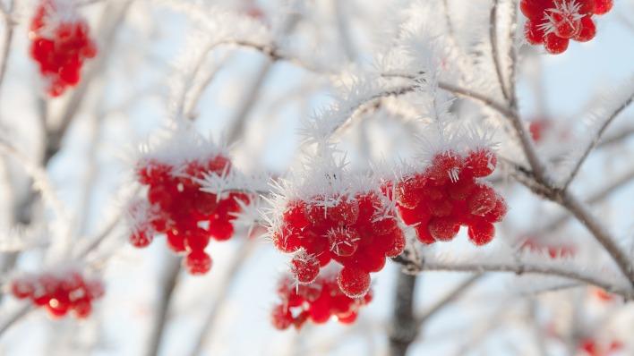 Стихи про осень  Самые красивые стихи про осень  Мой Малыш