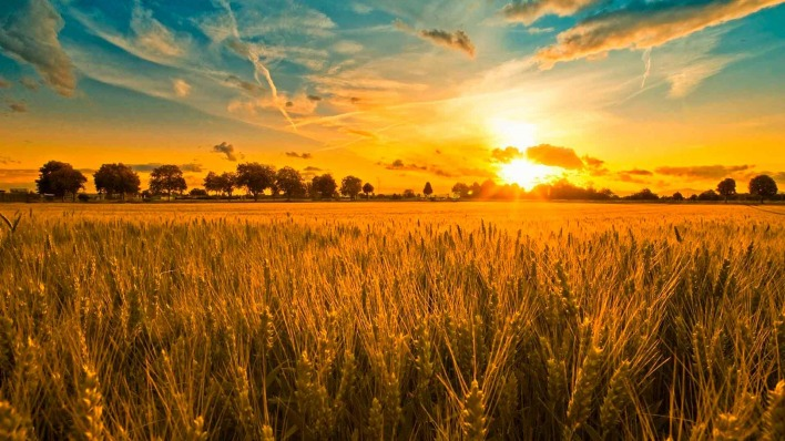 горы трава небо солнце  zastavoknet
