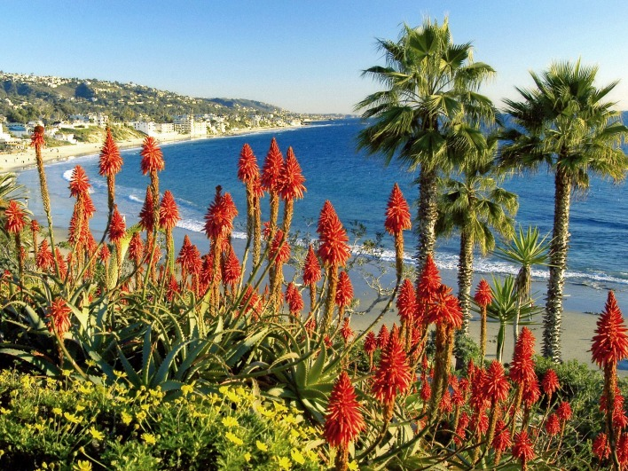 Laguna Beach Landscape, California