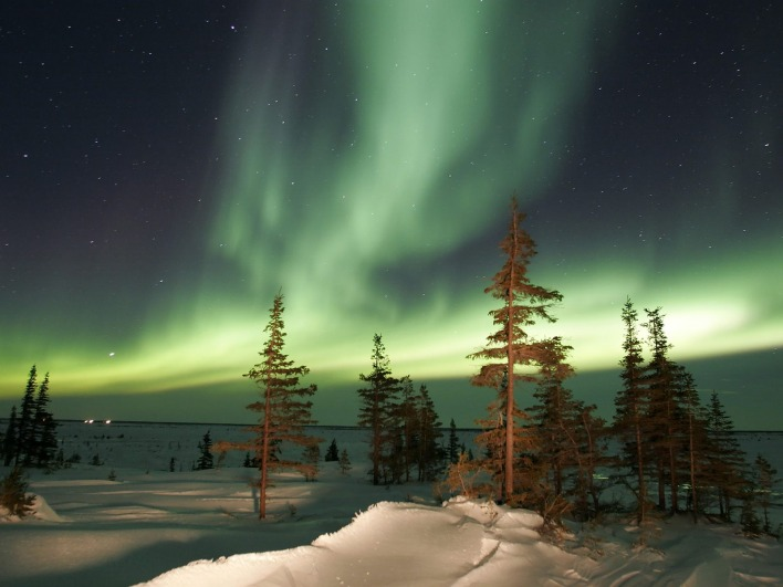 The Northern Lights, Churchill, Manitoba, Canada