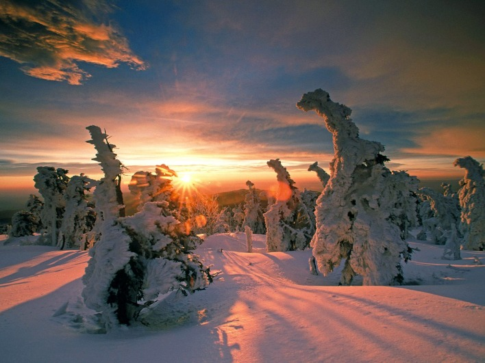 Snow-Covered Trees, Hochharz National Park, Saxony-Anhalt, Germany