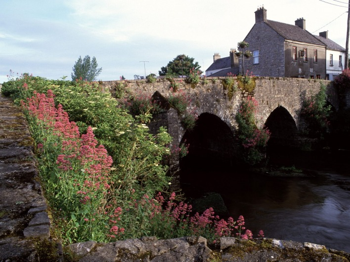River Boyne, County Meath, Ireland