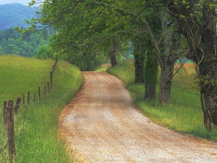 Country Road through Cades Cove, Great Smoky Mountains, Tennessee