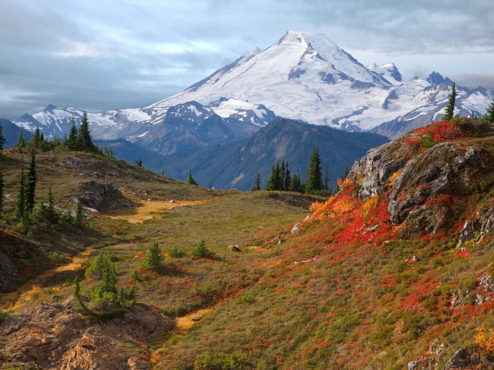 Mount Baker From Yellow Aster Butte, Washington