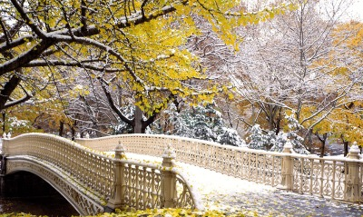 Early Snowfall, Central Park, New York