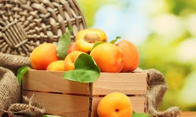 абрикосы корзина мешковина