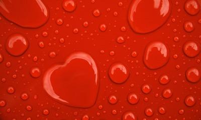 http://zastavok.ru/ts/love/1323561273.jpg