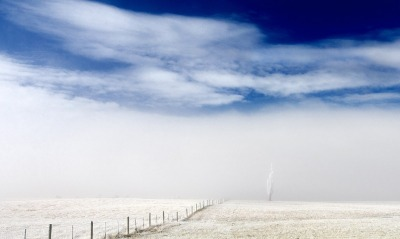 A frosty day in Central Otago, New Zealand