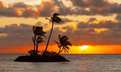 остров пальмы море закат