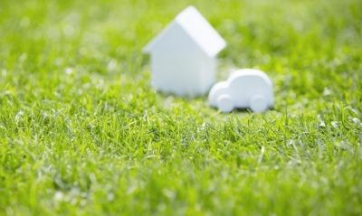 лужайка зелень трава фокус домик машинка