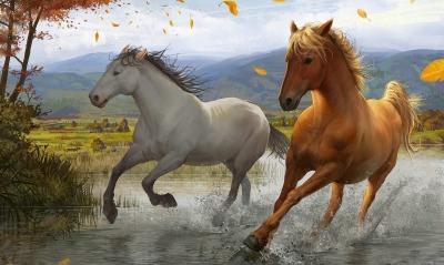 рисунок графика лошадь природа животные figure graphics horse nature animals