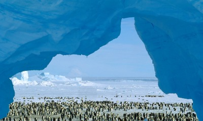 Atka Bay, Weddell Sea, Antarctica
