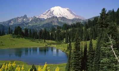Natural Beauty, Mount Rainier National Park, Washington